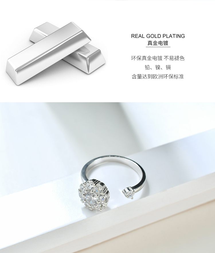 S925 sterling alloy net red rotating ring - good luck annual ring NHKSE28962-7