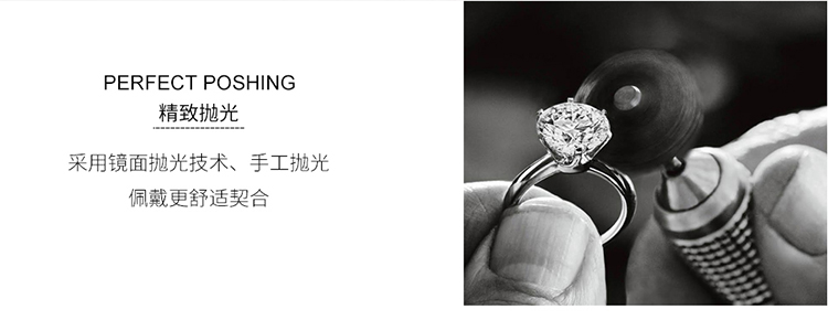 AAA micro-inlaid zircon ring - the only (platinum) NHKSE29262-8